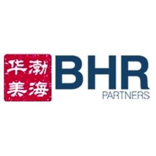 Hunter Biden sat on the board of BHR