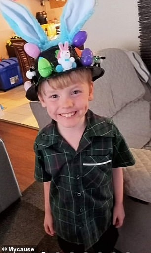 Rest in peace: Deklan Babington MacDonald, six, died in hospital after a bizarre apparent mishap with a penguin-on-a-leash toy, his family confirmed
