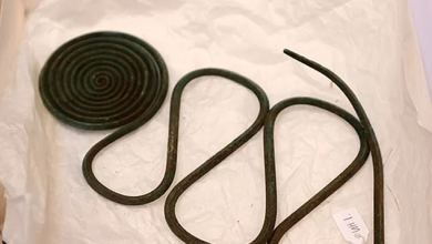 Mapmaker discovers trove of Bronze Age jewelry in western Sweden