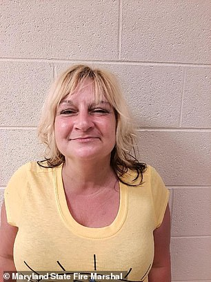 Gail Metwally, pictured, has been arrested and charged with attempted murder