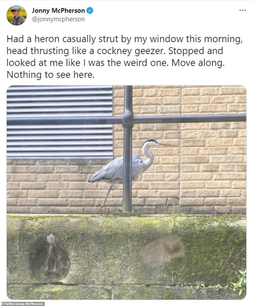 Hilarious:Jonny has also revealed that he is often visited by a heron, who he has called Keith, with the bird appearing on his narrowboat in the mornings