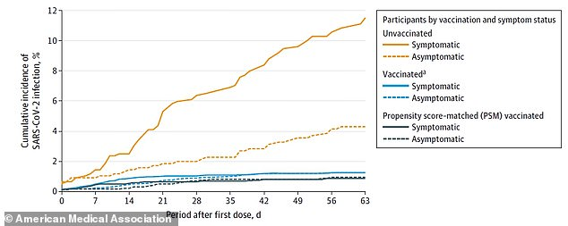 In the Israel study, just 8 fully vaccinated people (solid blue line) were symptomatic and 19 were asymptomatic (dotted blue line) compared to 38 symptomatic unvaccinated workers (solid yellow line) and 17 asymptomatic workers (dotted yellow line)