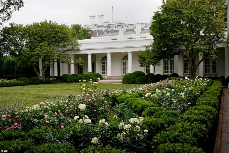 Melania Trump's newly renovated Rose Garden unveiled in August 2020 - commentators bemoaned the garden's changed appearance