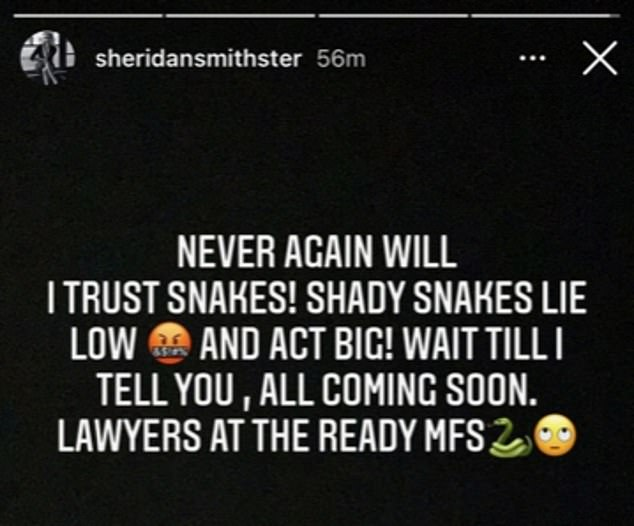 Fuming: The actress wrote on Instagram: 'I will never trust snakes again!  Shady snakes are low and act big!  Wait till I tell you.