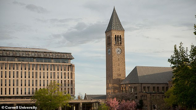 Libraries, like those on Cornell University campus, pictured, have a history rooted in racism starting with the creator of the Dewey Decimal Classification
