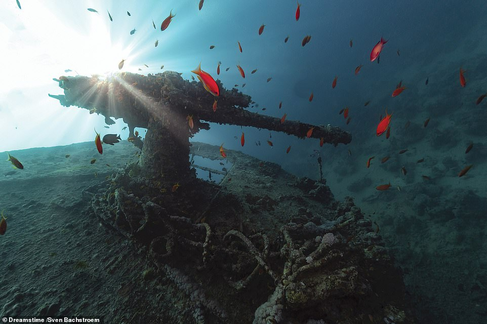 SS THISTLEGORM, NEAR RAS MUHAMMAD, RED SEA: 'The wreck of the British merchant navy ship SS Thistlegorm was discovered by none other than the legendary French diver Jacques Cousteau in the early 1950s, although its location was subsequently lost then rediscovered in the 1990s,' explains McNab. 'Following her launch in April 1940, the ship made three perilous voyages across war-torn waters – to the United States, Argentina and the West Indies – carrying everything from rum to aircraft parts. On her fourth voyage, from June 1941 to Alexandria, she carried a huge stock of trucks, weapons, ammunition and even two steam locomotives. On October 6, however, the ship was bombed while at anchorage near the Straits of Gubal. She caught fire, exploded and sank in less than a minute. Nine of her crew died. As these photographs indicate, the wreck is today an undeniably fascinating dive site, within easy reach for Egypt's tourist divers'
