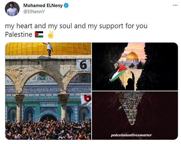The tweet included an outline of Israel with pro-Palestine images within (shown bottom right)