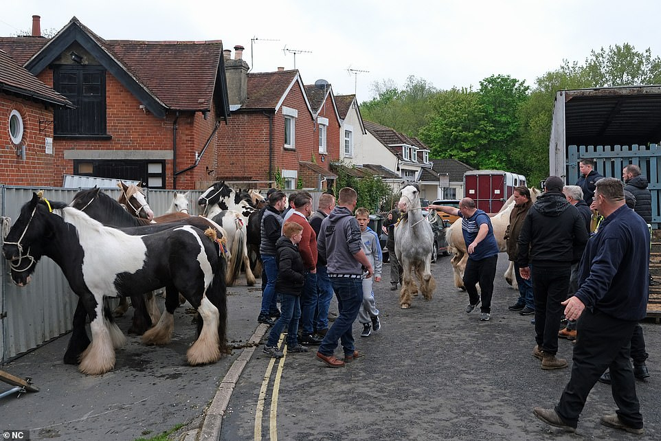 Crowds were seen alongside dozens of horses tied to fences next to homes in the area as horse trailers can be seen in the background