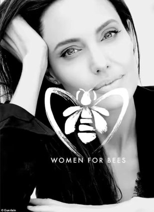 Buzz: Angelina was just designated the 'godmother' for Women for Bees, a program launched by the United Nation's UNESCO to train and support female beekeeper-entrepreneurs around the world