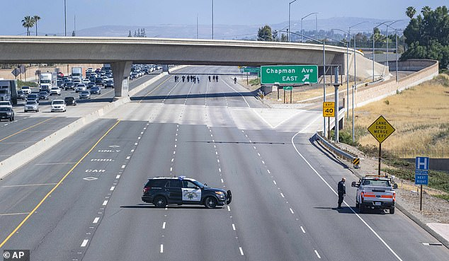 The California Highway Patrol closed the northbound lanes of the 55 freeway as police investigators walk the freeway looking for evidence following the shooting