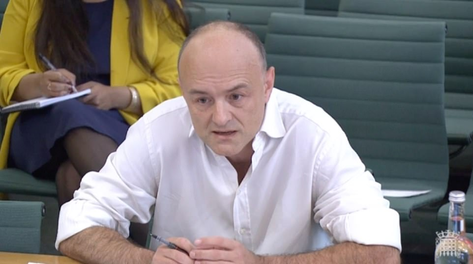 Dominic Cummings apologised for his own role as he started a marathon four hours of evidence to a joint session of the Commons health and science committees