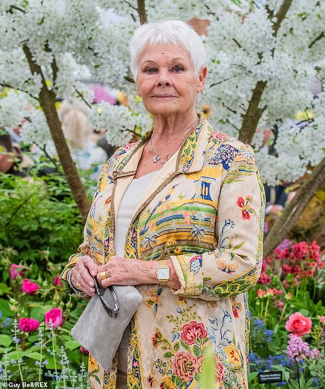 Downbeat: It comes after Dame Judi Dench made her opinions of the latest Bond movies known when she agreed that Daniel Craig's films were 'gloomy' in comparison to earlier plots