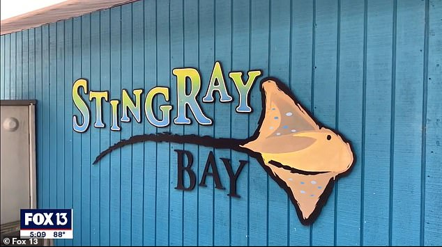 Stingray Bay was one of the zoo's most popular attractions. Visitors could interact with the rays and feed them shrimp
