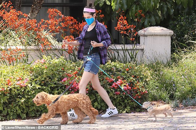 Co-parenting?One of the dog's leashes happened to featured the Friends logo. Perry and Hurwitz, who were first romantically linked in 2018, reportedly share the pooches