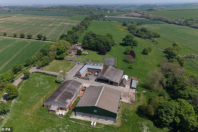 The suspect was wearing no shoes or socks, ripped tracksuit bottoms, an Adidas T-shirt and a Nike jacket when he was arrestedat a farm (pictured) in Hallington, near Louth, on Tuesday