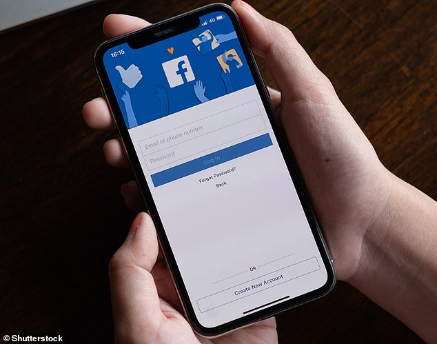 Facebook collects data from its single sign-on option, Facebook Login, which lets people sign into other websites, apps and services with their Facebook details (file image)