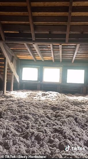 Interesting: It also had finished the floors, which are now covered in insulation