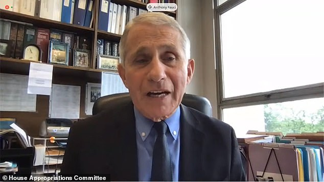 Fauci is pictured on May 25 appearing before a Congressional committee - the House Appropriations Committee - and stating that his organization funded the Wuhan lab to the tune of $600,000. It now emerges the figure was actually $826,000