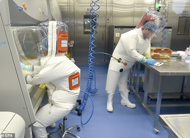 Dangerous work:Researchers in a laboratory at the now-infamous Wuhan Institute of Virology last year
