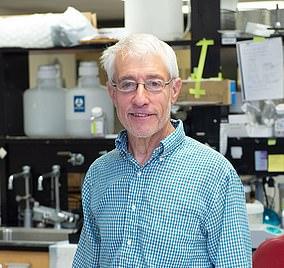 Professor Stanley Perlman