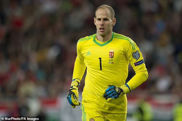 Peter Gulacsi will be busy between the sticks for Hungary in the 'Group of Death' this summer