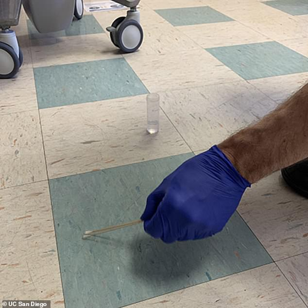 A UC San Diego researcher swabs the floor, looking for COVID samples
