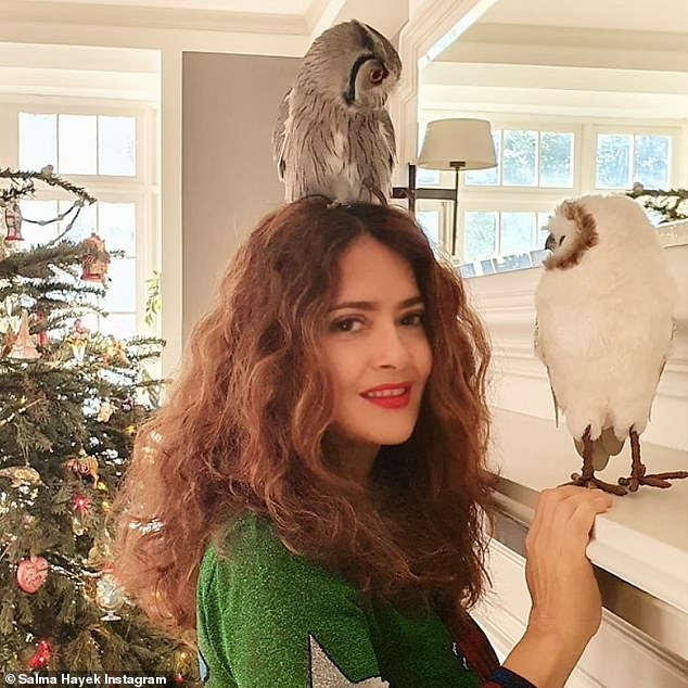 Bird lady: While the Like A Boss star, 54, originally gifted the bird to her husband François-Henri Pinault for Valentine's Day, her bond with their family pet has only grown over the years