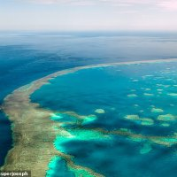 China threatens to destroy Great Barrier Reef economy with secret plot; Levi Parsons; Daily Mail