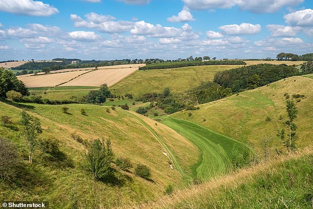 Beauty zones: The Yorkshire Wolds (pictured) and Cheshire Sandstone Ridge are set to become the first newAreas of Outstanding Natural Beauty (AONBs) in Britain in 26 years
