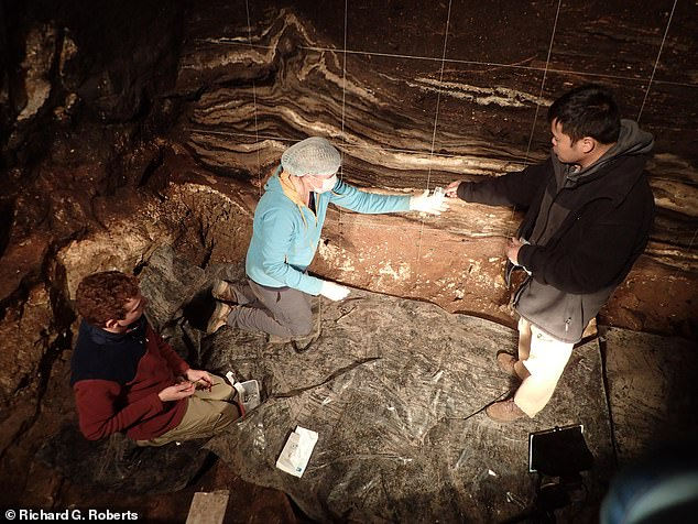 Early modern humans may have once lived alongside Denisovans and Neanderthals more than 44,000 years ago, DNA discovered in a Siberian cave has suggested. Pictured: (from left to right) researchers Kieran O'Gorman, Zenobia Jacobs and Bo Li collecting sediment samples for genetic analysis from the South Chamber of the Denisovan cave in southern Siberia
