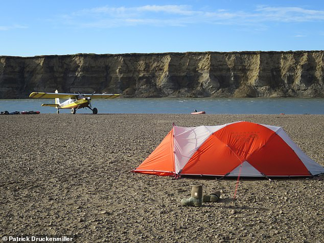 'We solved several long-standing mysteries about the dinosaur reign, but opened up a new can of worms,' said Professor Erickson He added: 'How did they survive Arctic winters?' Pictured: the researchers' base camp along the Colville River