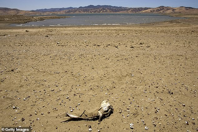 A warming world will also likely cause350 million to be in drought and expose 420 million more people to extreme and potentially lethal heatwaves. The San Luis Reservoir in California is featured