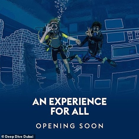 The experienceis expected to launch by the end of the year