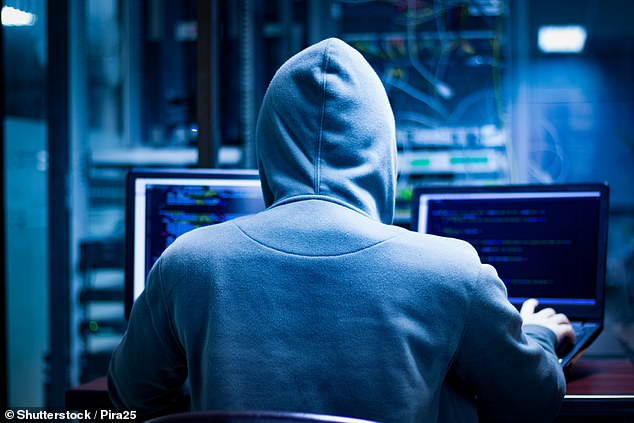 Australians have been scammed a total of $851million in the last year alone as the Covid-19 pandemic forced many to stay at home and spend longer online (stock image)