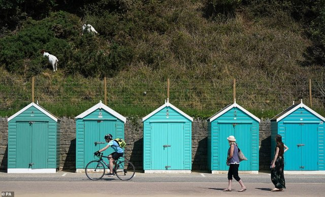 Public Health England (PHE) also issued a heat-health alert, warning members of the public to take measures to stay cool and look out for vulnerable people. Pictured: People enjoy the sun in Dorset