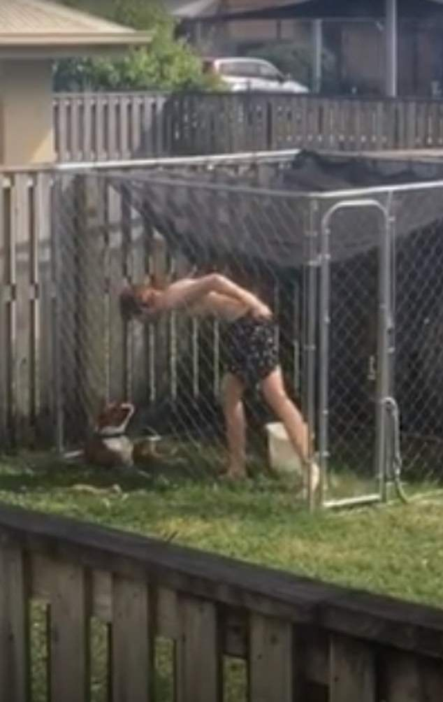 Halliday (pictured) is seen kicking, punching, spitting and throwing objects at the dog in two videos released by the RSPCA