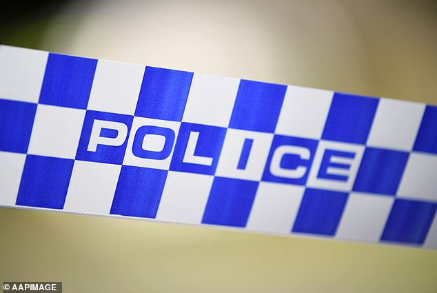 A police officer in Victoria was taken to hospital with severe facial bruising, cuts to his lower lip, stress fractures and chipped teeth after being attacked by Wiaa Puot in 2020 (stock image)