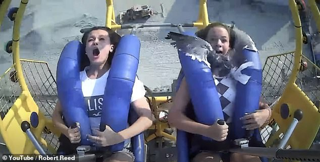 The seagull lands on the face of Kiley Holman (right), 13, as she goes on the SpringShot ride with her boyfriend Georgia Reed, 14 (left) at Morey's Pier amusement park in New Jersey.  The girls celebrated Georgia's birthday