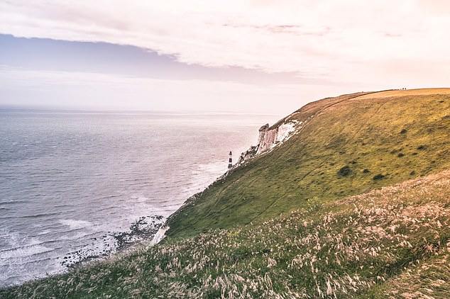 Maritime and Coastguard Agency (MCA) was called out last year for more than 33,000 incidents around the UK coast.  Pictured, the Jurassic Coastline, Southern England