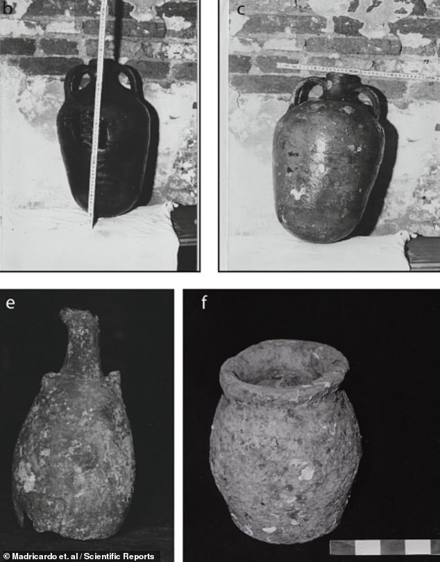 In the Roman era , much of what is now submerged under the lagoon was land ¿ and many artefacts from the time have been found in Venice's islands and waterways. Pictured: photographs of amphorae found along theTreporti Channel by archaeologists in 1985