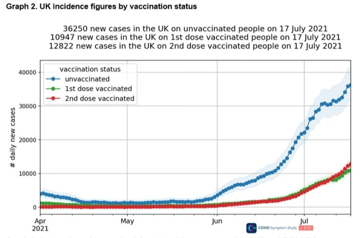 This graph shows un-vaccinated people were most likely to be infected with Covid last week. But people who had received two doses were more likely to be infected than those that had got just one dose. This may be because almost 70 per cent of adults are double-vaccinated, while only 19 per cent have received one dose