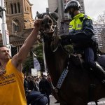 Photo shows a maskless thug punching police horse during Sydney's anti- Covid lockdown protest 💥👩💥