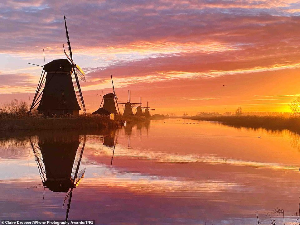 A Dutch Morning: Claire Droppert's photograph from Kinderdijk, Netherlands shows five windmills in a row along the side of a river. The windmills all appear to be angled to catch the sun as it rises just out of view, causing the sky and water to turn magnificent shades of orange and purple