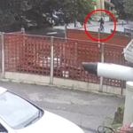 Cyclist narrowly avoids being crushed by collapsing tree on south London road [Video] 💥👩💥