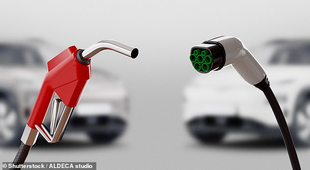 With the Government's ban on new petrol and diesel passenger car sales from 2030, those who have already made the switch to an EV were always unlikely to go back to a vehicle that runs on fossil fuels