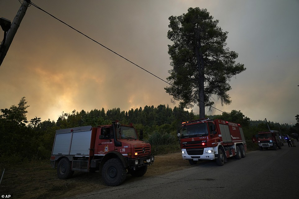 Flames burn a forest during a wildfire in Gouves village on the island of Evia