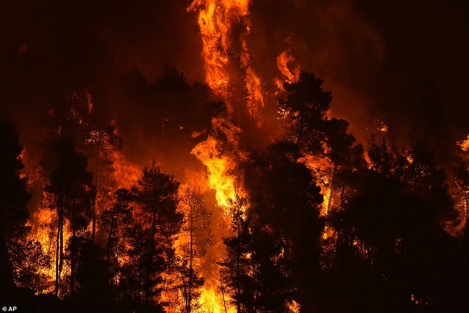 Raging fires tear through wildlife near Gouves village on the island of Evia today