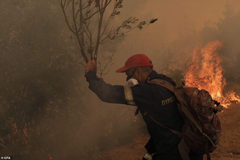 A firefighter is forced to use tree branches to try and beat out flames due to a lack of water as emergency services struggle to bring the Evia blazes under control