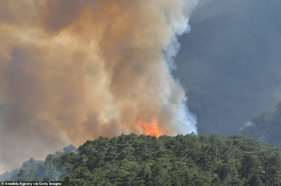 Wildfires also broke out in Turkey after temperatures soared to 46C and crews are still trying to extinguish blazes in five locations in the coastal province of Mugla, in the country's southwest