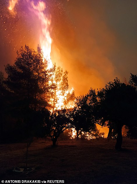 The Evia fire (pictured near Asmini village) is one of around a dozen currently burning in Greece